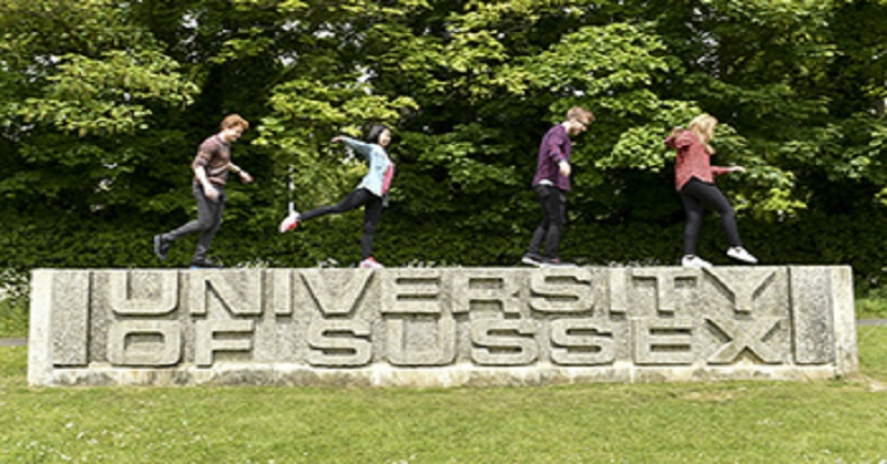 Research Scholarship Program, Academic research training, International scholarship, PhD scholarship, MSc research scholarship, Research scholarship, Academia, Postgraduate Scholarship in Artificial Intelligence and Data Science at Sussex University 2021, University of Sussex