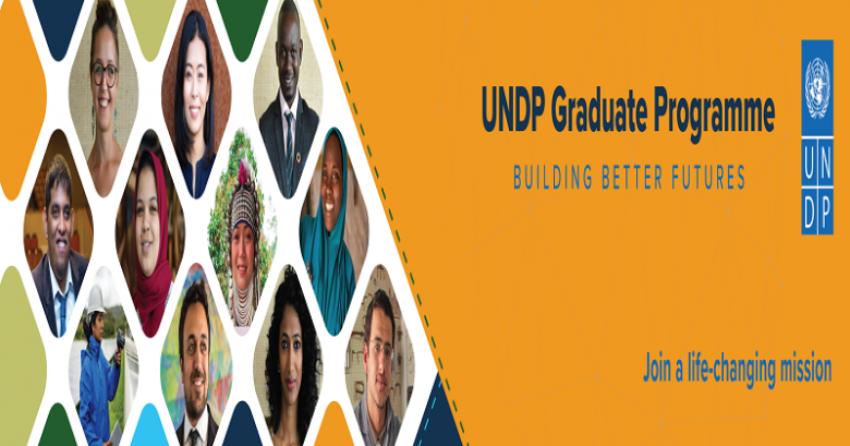 United Nations (UNDP) fully-funded Program for Outstanding Graduates, UNDP call for applications, International program, Opportunity for graduate students, SDG programs