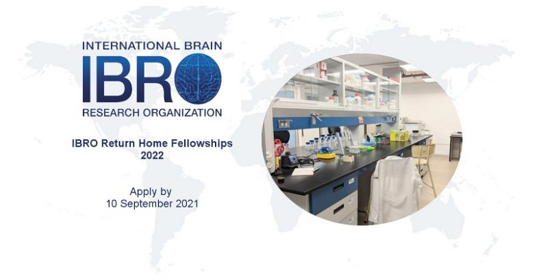 IBRO Return Home Fellowships for Researchers in Less Developed Countries 2022, International fellowship, Fellowship applications, Postgraduate fellowships, Individual fellowship application