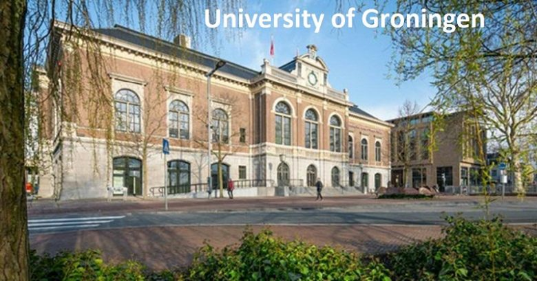 Tenure Track Position: Assistant Professor, International Management, University of Groningen